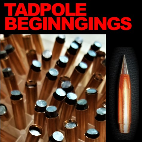 New Precision Bullet On the Horizon – tadpole stage development